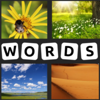 4 Pics 1 Word – 2021 New  APKs (Mod) Download – for android