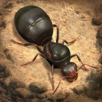 TheAnts:UndergroundKingdom  APKs (Mod) Download – for android