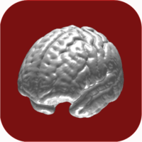 N-Back Memory Training  APKs (Mod) Download – for android